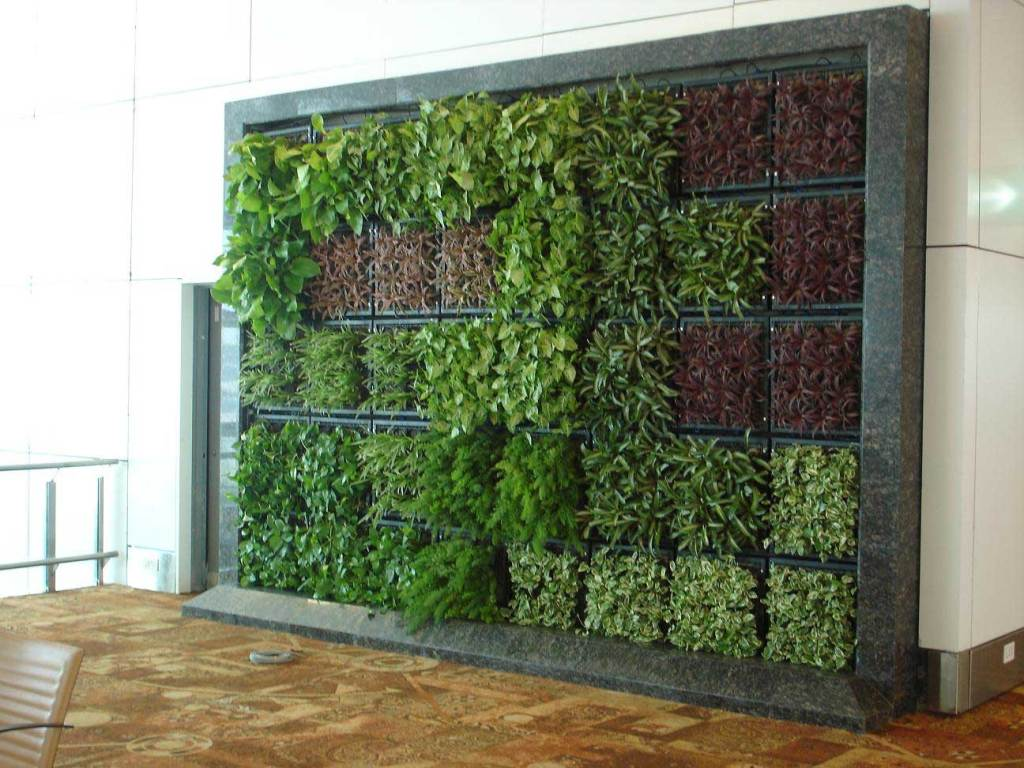 Landscape engineering landscaping garden landscape Green walls vertical planting systems